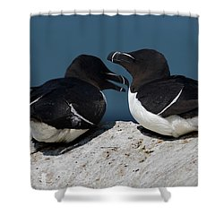 Gossip Mongers Shower Curtain by Brent L Ander