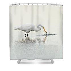 Gotcha Shower Curtain by Karol Livote