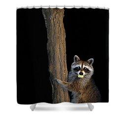 Gotcha The Cornbread Bandit Shower Curtain by Randall Branham