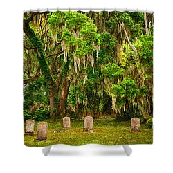 Gould's Cemetery Shower Curtain by Priscilla Burgers