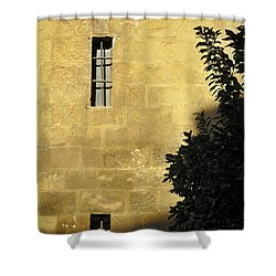 Granada Cathedral Shower Curtain by Guido Montanes Castillo
