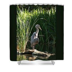 Great Blue Heron Shower Curtain by Ellen Henneke