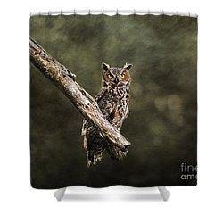 Great Horned Owl I Shower Curtain by Jai Johnson