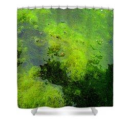 Green Algae Shower Curtain by Salman Ravish