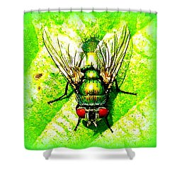 Green Bottle Fly Shower Curtain by The Creative Minds Art and Photography