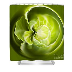 Green Cabbage Orb Shower Curtain by Anne Gilbert