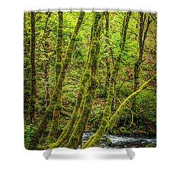 Green Green Shower Curtain by Jon Burch Photography