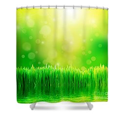 Green Nature Background With Fresh Grass Shower Curtain by Michal Bednarek
