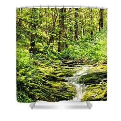 Green River No2 Shower Curtain by Weston Westmoreland