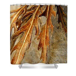 Grip Of Winter Shower Curtain by Chris Berry