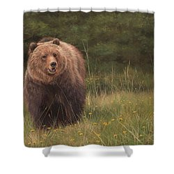 Grizzly Shower Curtain by David Stribbling