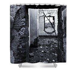 Growing Out Of Ruin Shower Curtain by Mike  Dawson