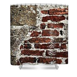Grunge Brick Wall Shower Curtain by Elena Elisseeva