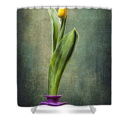 Grunge Yellow Tulip Shower Curtain by Erik Brede