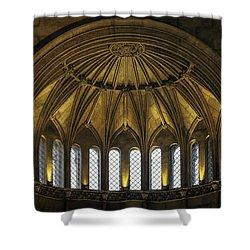 Half Dome Shower Curtain by Lynn Palmer