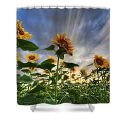Halleluia Shower Curtain by Debra and Dave Vanderlaan