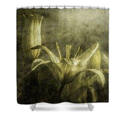 Halleluiah Shower Curtain by Diane Schuster