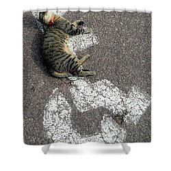 Handicat Parking Shower Curtain by Barbie Corbett-Newmin