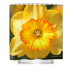 Happy Face Shower Curtain by Kathleen Struckle