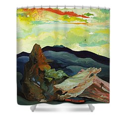 Harmonica Under Firewood Shower Curtain by Joseph Demaree
