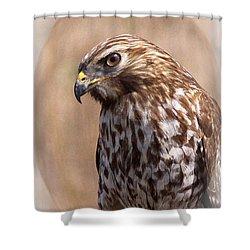 Hawk - Sphere - Bird Shower Curtain by Travis Truelove