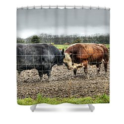 Head To Head Shower Curtain by Cricket Hackmann