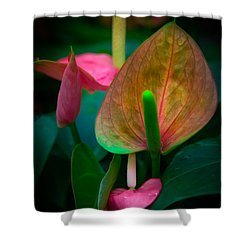Hearts Of Joy Shower Curtain by Karen Wiles