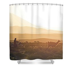 Herd Of Llamas Lama Glama In A Desert Shower Curtain by Panoramic Images