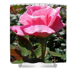 Here's To New Beginnings Shower Curtain by Eloise Schneider