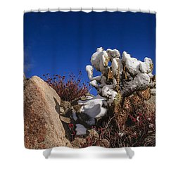 High Desert Snow 2 Shower Curtain by Scott Campbell