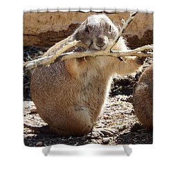 High Fiber Diet Shower Curtain by David G Paul