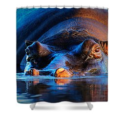 Hippopotamus  At Sunset Shower Curtain by Johan Swanepoel