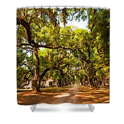 Historic Lane 2 Shower Curtain by Steve Harrington
