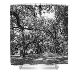 Historic Lane Bw Shower Curtain by Steve Harrington