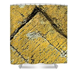 History Of Earth 3 Shower Curtain by Heiko Koehrer-Wagner
