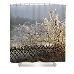 Hoarfrost In Winter Shower Curtain by Matthias Hauser
