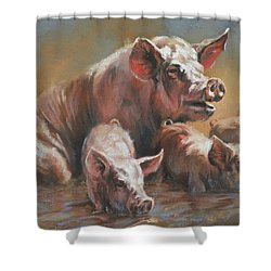 Hog Heaven Shower Curtain by Mia DeLode