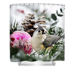 Holiday Bird Titmouse Square Shower Curtain by Christina Rollo