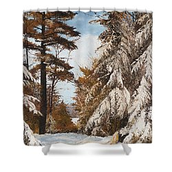 Holland Lake Lodge Road - Montana Shower Curtain by Mary Ellen Anderson