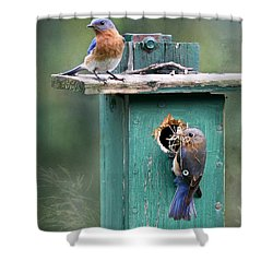 Home Sweet Home Shower Curtain by Lori Deiter