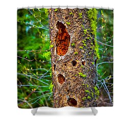 Home Sweet Home Shower Curtain by Omaste Witkowski