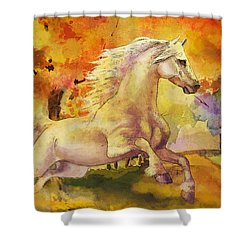Horse Paintings 003 Shower Curtain by Catf