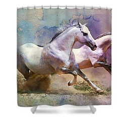 Horse Paintings 004 Shower Curtain by Catf