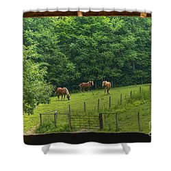 Horses Feeding In Field Shower Curtain by Dan Friend