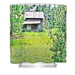 House In The Thicket Shower Curtain by Eloise Schneider