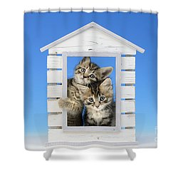 House Of Kittens Ck528 Shower Curtain by Greg Cuddiford
