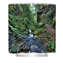 How Green Is My Glen Shower Curtain by Gary Eason