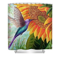 Humming For Nectar Shower Curtain by David G Paul