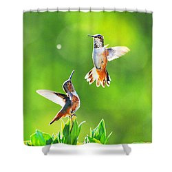 Hummingbird Dance  Shower Curtain by Lynn Bauer
