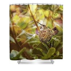 Hummingbird Mom In Nest Shower Curtain by Angela A Stanton